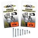 Bolt Motor Schrauben Kit KTM 2T 250/300 17-20