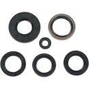 Moose Racing Seal-Kit  Oil Kaw 822251