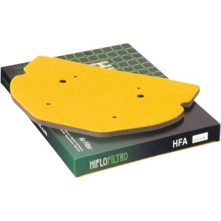 Hiflo Filtro Luftfilter 10111210