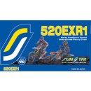 Kette U-RING 520X118 GOLD SS520EXR1-118G