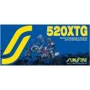 Kette RING 520X118 GOLD SS520XTG-118G
